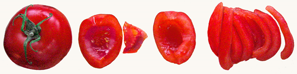 mango_papaya_salsa_3